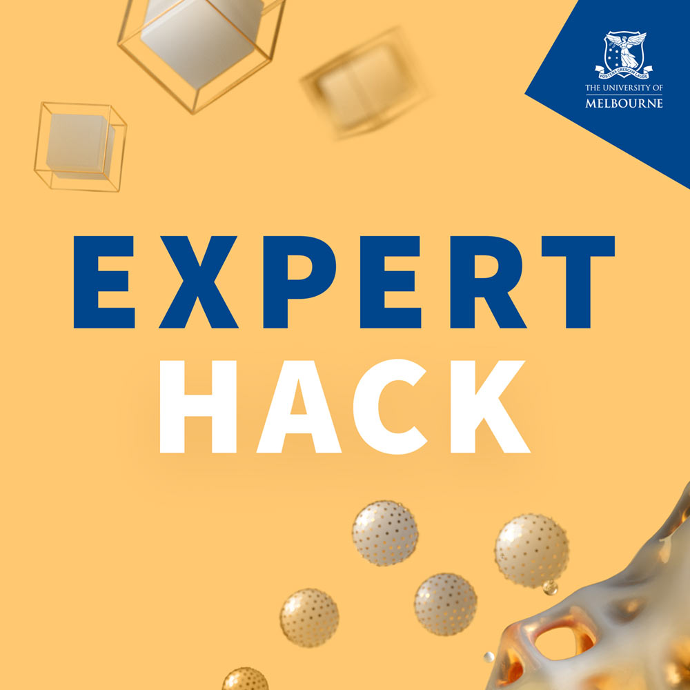Expert Hack logo