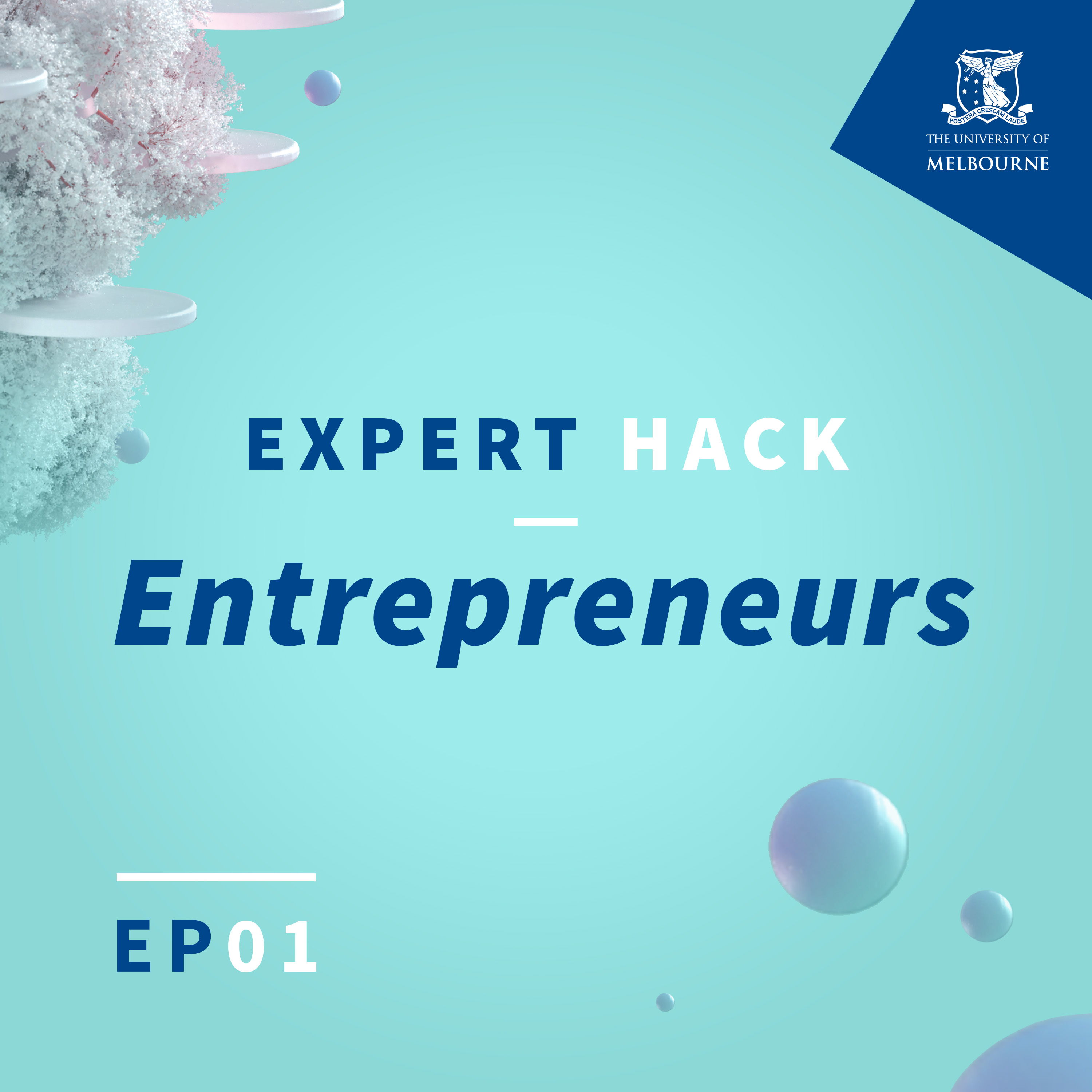Expert Hack episode 01 artwork